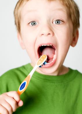 bambino denti