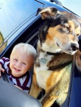 viaggiare-con-bambini-e-cani