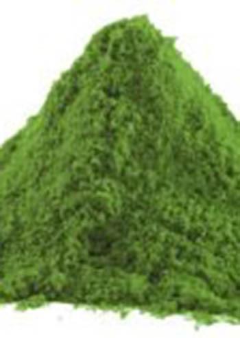 alga-spirulina-super-food