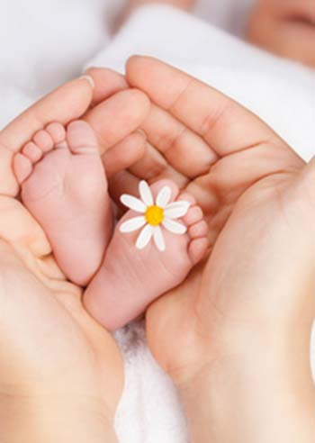 Lovely infant foot with little white daisy