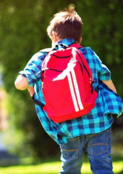 scuola-nuove-linee-guida
