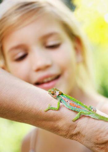 bambini-insegnare-ad-amare-tutti-gli-animali